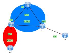 OSPF协议知识点归纳