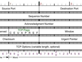 TCP协议(上)